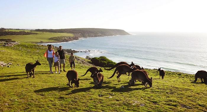 Nước Úc (Australia) có diện tích rộng lớn